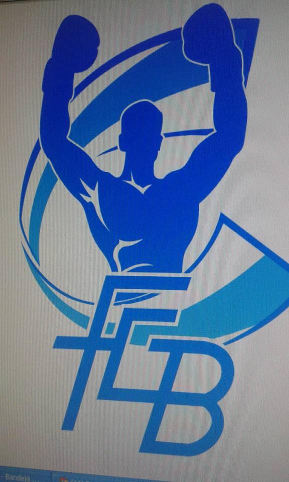 Nuevo logotipo de la Federación Gallega de Boxeo publicado en la web.