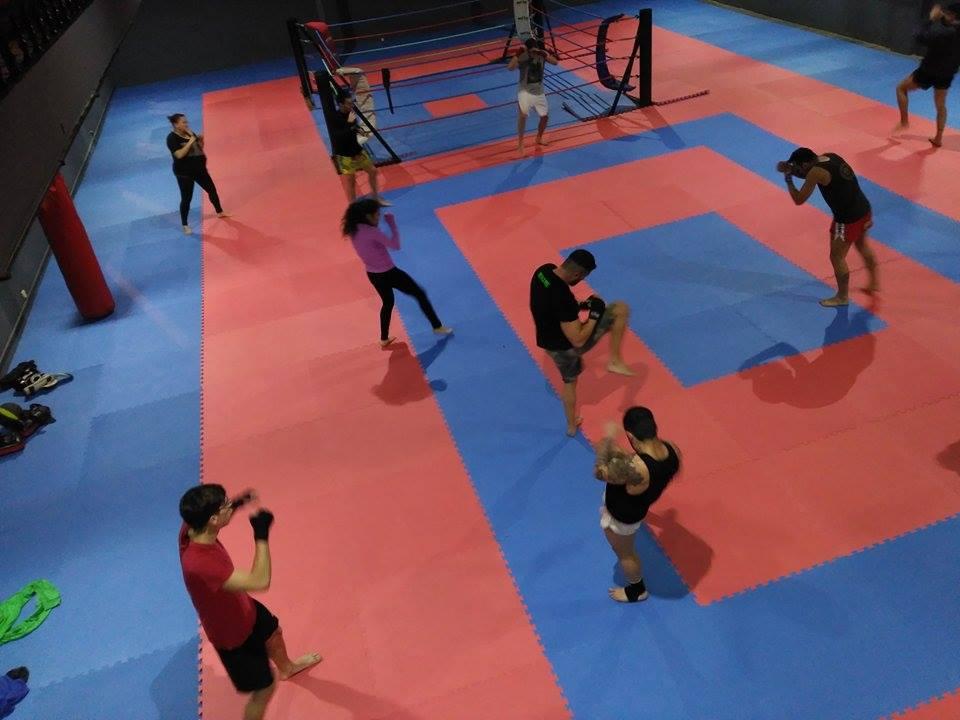 Grupo de alumnos desarrollando ejercicios de técnica de combate.