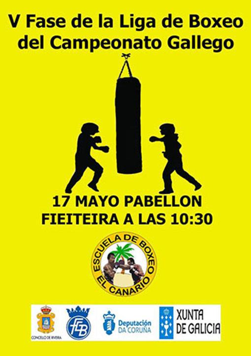 Afiche publicitario de la V Jornada de la liga Infantil/Discapacidad Funcional/Veteranos en A Fieiteira de Ribeira.
